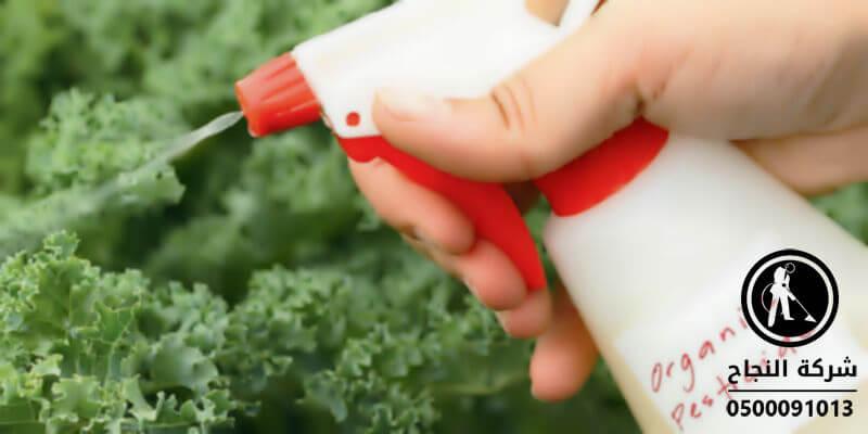 افضل شركات رش المبيدات الحشرية بجدة