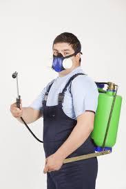 شركة رش مبيدات بالرياض, افضل شركة رش مبيدات بالرياض